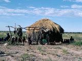 Bushmen  Kalahari  Botswana  Africa