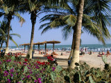 Palm Trees and Tourists  Bakau Beach  the Gambia  West Africa  Africa