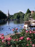 Stratford-Upon-Avon  Warwickshire  England  United Kingdom