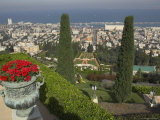 Elevated View of City Including Bahai Shrine and Gardens  Haifa  Israel  Middle East