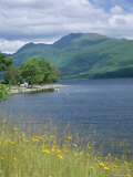 Loch Lomond and Ben Lomond from North of Luss  Argyll and Bute  Strathclyde  Scotland