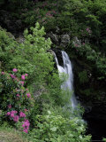 Inversnaid Waterfall  Loch Lomond  Stirling  Central Region  Scotland  United Kingdom
