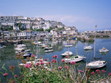 Brixham Harbour  Devon  England  United Kingdom
