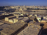 Jewish Tombs in the Mount of Olives Cemetery  with the Old City Beyond  Jerusalem  Israel