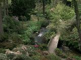 Bodnant Gardens  Gwynedd  North Wales  Wales  United Kingdom