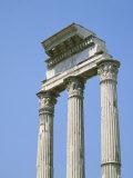 The Forum  Rome  Lazio  Italy