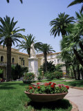 Sorrento  Campania  Italy