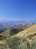 Mountains Near Chania  Western Area  Crete  Greek Islands  Greece