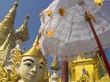Mystical Figure  White Umbrella and Golden Stupas  Shwedagon Paya  Yangon  Myanmar