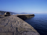 The Cobb  Lyme Regis  Dorset  England  United Kingdom