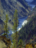 Grand Canyon  Yellowstone National Park  Unesco World Heritage Site  USA