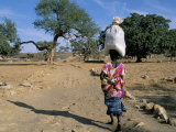 Woman Carrying Sack on Her Head  Ogol Village  Sangha  Dogon Area  Mali  Africa