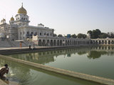 Sikh Pilgrim Bathing in the Pool of the Gurudwara Bangla Sahib Temple  Delhi  India