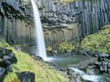 Svartifoss Waterfall  Skaftafell National Park  Iceland  Polar Regions