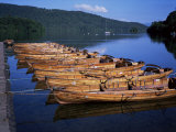 Rowing Boats on Lake  Bowness-On-Windermere  Lake District  Cumbria  England  United Kingdom