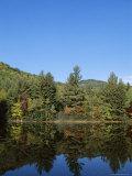 Lake Reflections  Near Jackson  New Hampshire  New England  USA