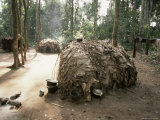 Primitive Huts of Pygmy Village in Forest Near Bagandou  Central African Republic  Africa