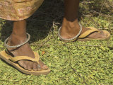 Female Farmer's Feet Standing on Henna Leaves  Village of Borunda  India