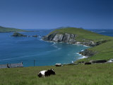 County Kerry  Munster  Eire (Republic of Ireland)