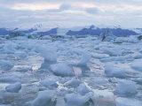 Jokulslarlon Glacial Lagoon  Vatnajokull Icecap  South Area  Iceland  Polar Regions