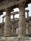 Paestum  Campania  Italy