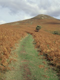 The Sugar Loaf  in Autumn  Black Mountains Near Abergavenny  Monmouthshire  Wales