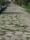 Roman Street  Paestum  Campania  Italy