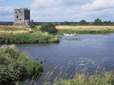 Threave Island and Castle  Dumfries and Galloway  Scotland  United Kingdom
