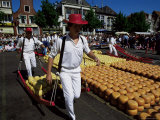 Friday Cheese Auction  Alkmaar  Holland