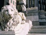 Lion  San Lorenzo Cathedral  Genoa (Genova)  Liguria  Italy
