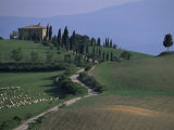 House and Cypress Trees  Val d&#39;Orcia  Siena Provice  Tuscany  Italy
