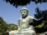The Big Buddha Statue  Kamakura City  Kanagawa Prefecture  Japan