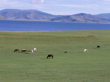 Lake Terkhiin Tsagaan Nuur  Volcanic Region of Khorgo  Arkhangai  Mongolia  Central Asia