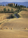 Rolling Landscape in Siena Province  Tuscany  Italy
