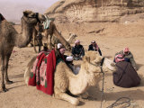 Group of Bedouin and Camels  Wadi Rum  Jordan  Middle East