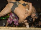 Sumo Wrestlers Competing  Grand Taikai Sumo Wrestling Tournament  Kokugikan Hall Stadium  Tokyo