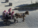 Arab Men in Donkey Cart  Bosra  Syria  Middle East