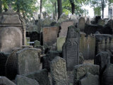 Headstones in the Graveyard of the Jewish Cemetery  Josefov  Prague  Czech Republic