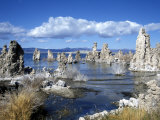 Landscape of Tufa Formations at Mono Lake  California  USA