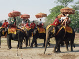 Tourists Riding Elephants in Traditional Royal Style  Ayuthaya  Thailand  Southeast Asia