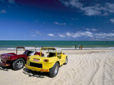 Dune Buggies  Jacuma  Natal  Rio Grande Do Norte State  Brazil  South America