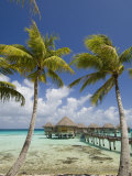 Pearl Beach Resort  Tikehau  Tuamotu Archipelago  French Polynesia Islands