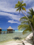 Kia Ora Resort  Rangiroa  Tuamotu Archipelago  French Polynesia Islands