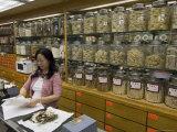 Traditional Chinese Medicine  Sheung Wan District  Hong Kong  China