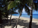 Castara Bay  Tobago  West Indies  Caribbean  Central America