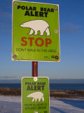 Sign  Polar Bear Alert at Hudson Bay  Churchill  Manitoa  Canada