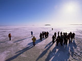 People Walking on Pack Ice  Gulf of Bothnia  Lapland  Sweden  Scandinavia