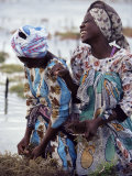 Two Smiling Zanzibari Women Working in Seaweed Cultivation  Zanzibar  Tanzania  East Africa  Africa