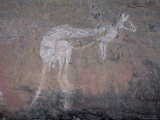 Painting of a Kangaroo at Nourlangie Rock  Australia