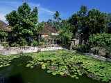 Ornamental Lake at the Old Palace of the Raja of Karangasem  Amlapura  Bali  Indonesia